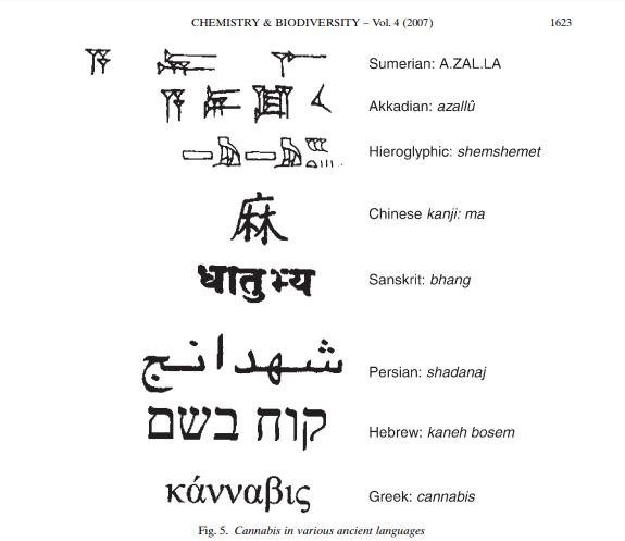 Cannabis Ancient Cultures