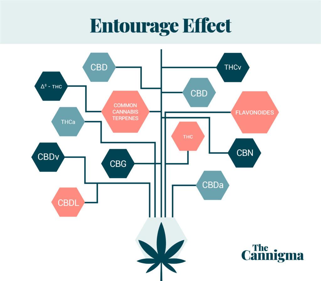 The Entourage Effects Scheme