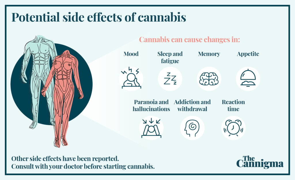 Potential side effects of cannabis