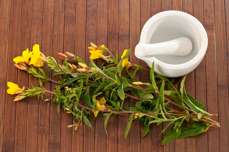 Evening primrose has been used to treat a variety of conditions including rheumatoid arthritis, premenstrual syndrome, asthma, and more.