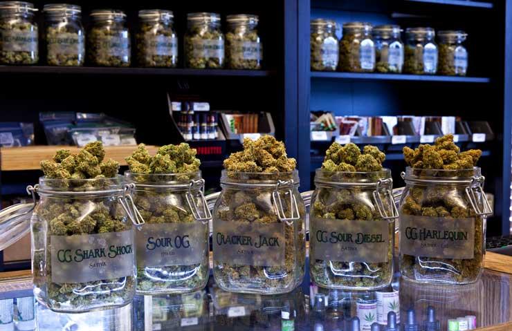 Jars of medical marijuana in a dispensary. (Shutterstock)